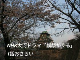 NHK大河ドラマ『麒麟がくる』