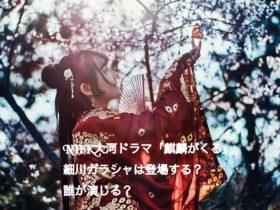 NHK大河ドラマ麒麟がくる