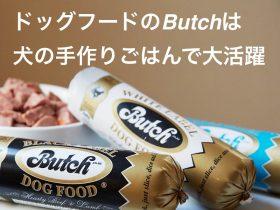 Butch(ブッチ)は犬の手づくりごはんで大活躍